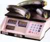Pennsylvania Scale Space Efficient Price Computing Scale RS-10